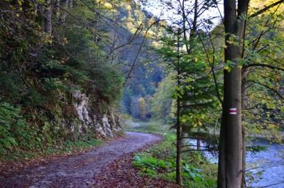 Szlak Przełomem Dunajca - okolice Golicy