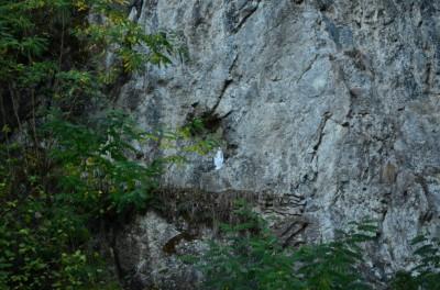 Figura NMP w skalnej ścianie