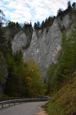 Skała Wylizana - Przełom Leśnickiego Potoku