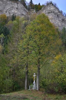 Przydrozna Kapliczka w Leśnicy