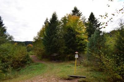 Przełęcz Limierz (Sedlo Targov, 677 m n.p.m.)