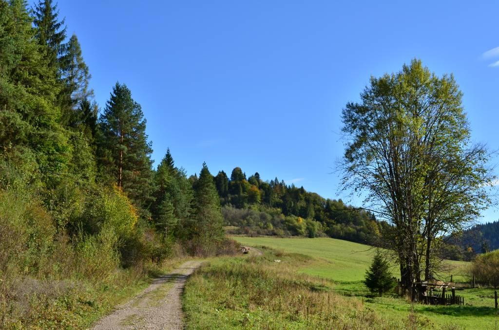 Szlak z Czerwonego Klasztoru do Leśnicy