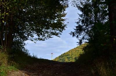 Wyjście na Przełęcz pod Klasztorną Górą