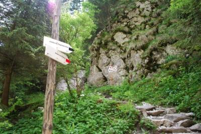 Odbicie szlaku do jaskiń: Mylnej, Raptawickiej i Obłazkowej