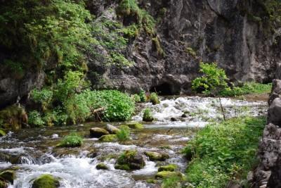 Potok Kościeliski - w centrum kadru Jaskinia Pisana